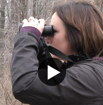 Step Outdoors – The Audubon Bird Walks