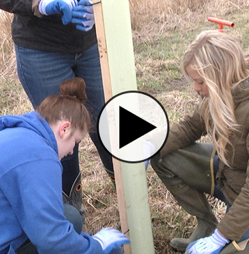Students & Locals Plant 500+ Trees