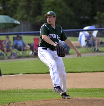 Hornets fall to South Williamsport in D4 title game