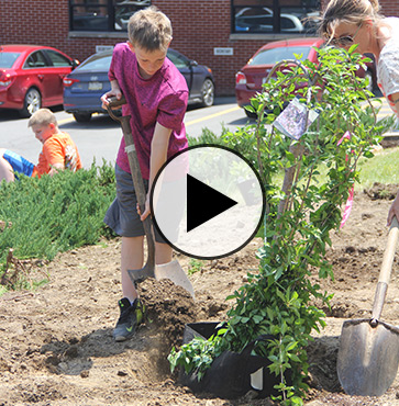 Memorial Tree planted for Sophia Campbell