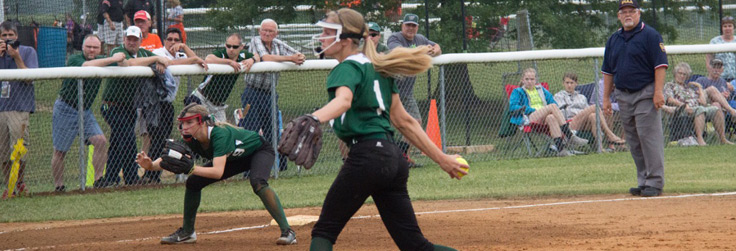 Hornets Come Up Short in District Final