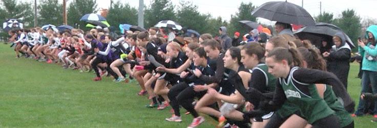 NTL Schools run well at District Championships