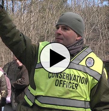 Trout Released by Community in Pine Creek