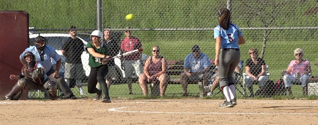 Lady Hornets fall to Loyalsock in D4 quarterfinals