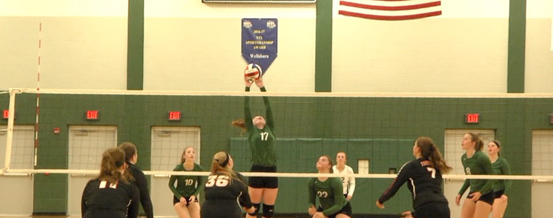 Lady Hornets sweep Towanda