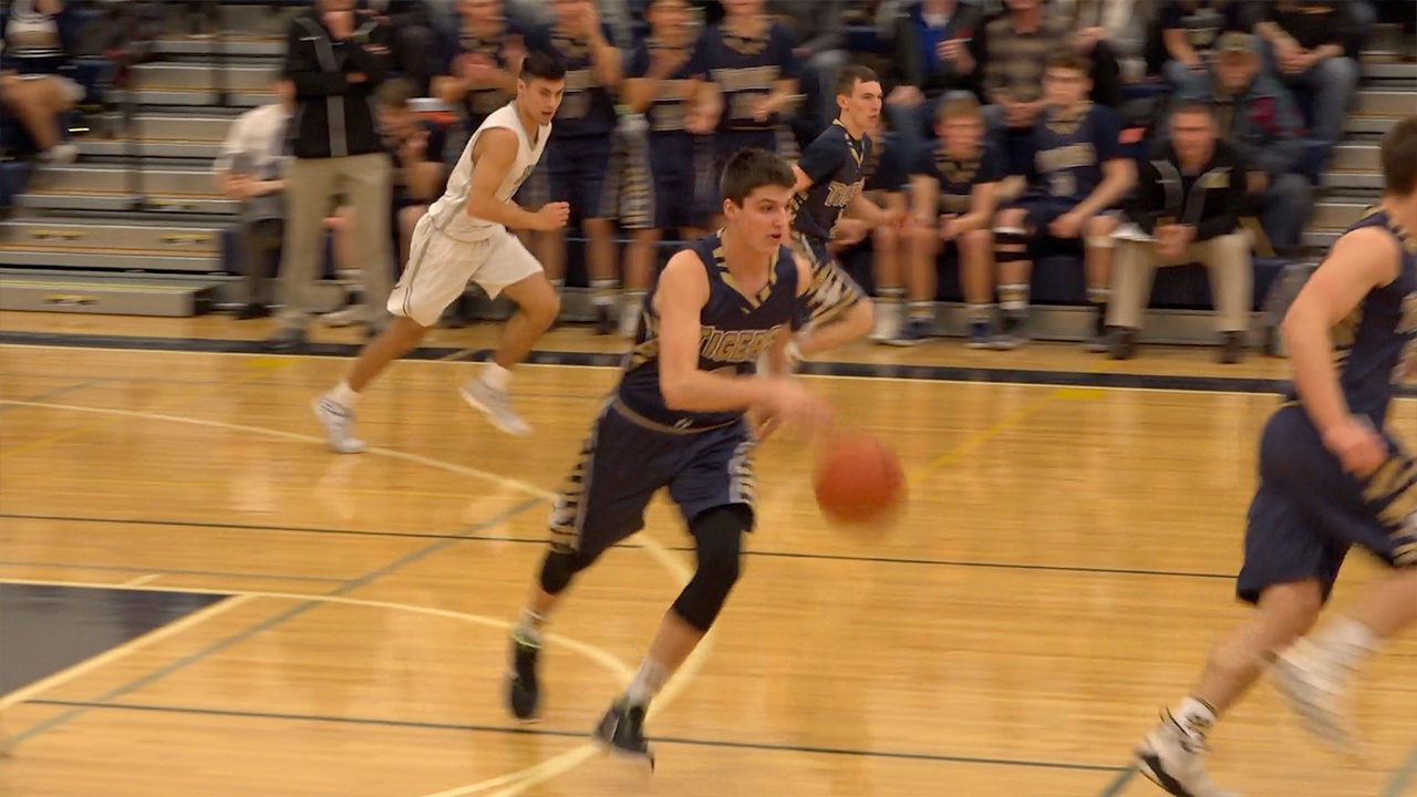 Tigers fall to Blue Jays in Districts