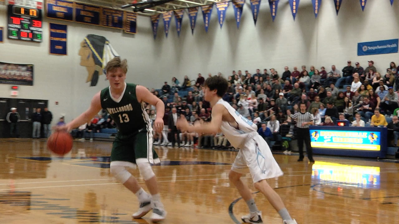 Hornets fall to Loyalsock for D4 title