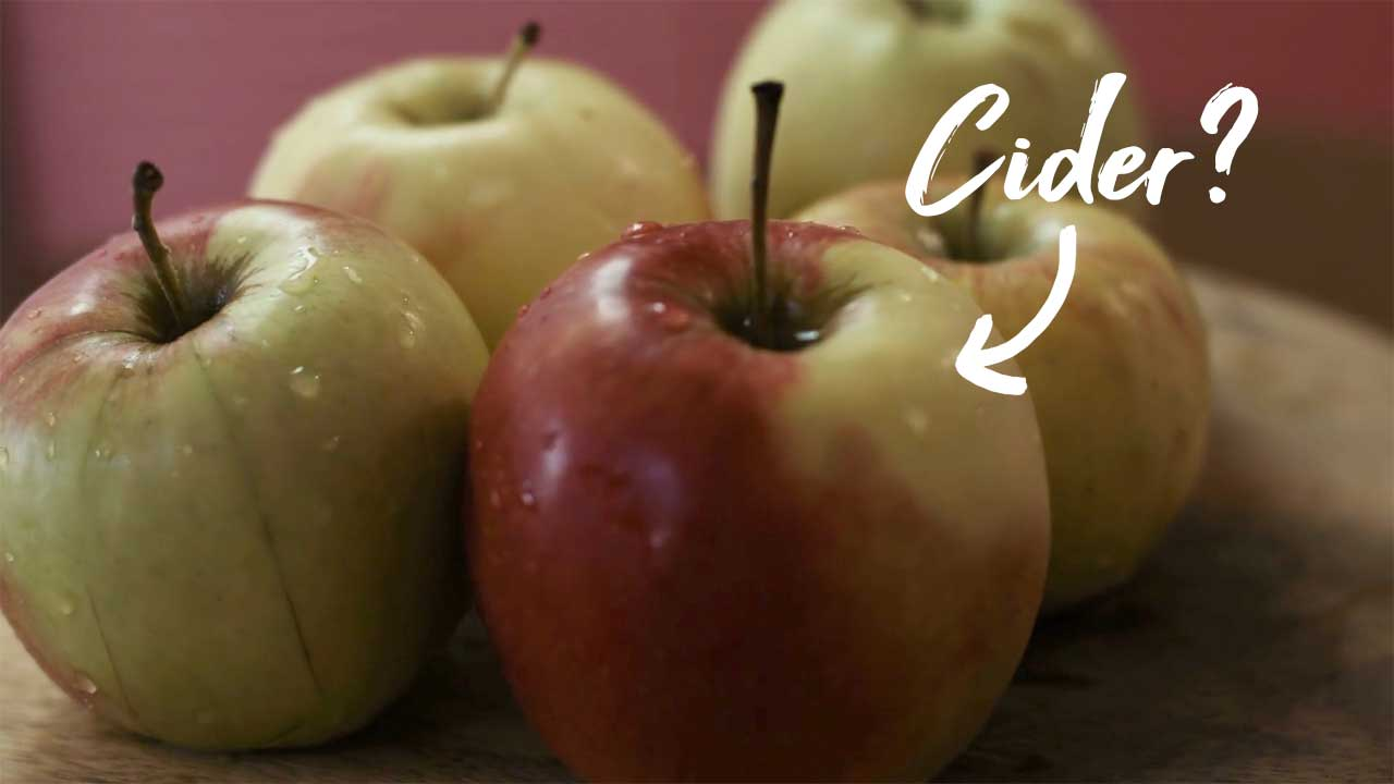 Do You Know How Apple Cider Is Made?